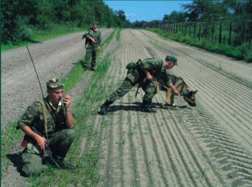 Пограничники на кордоне