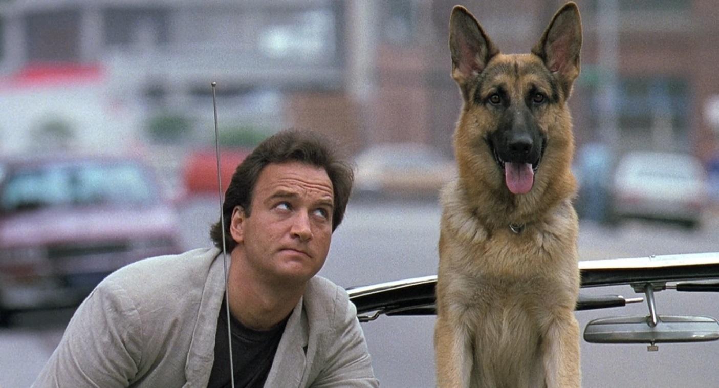 Рисунок 2. Кадр из фильма «К-9: собачья работа» (1989 г.)