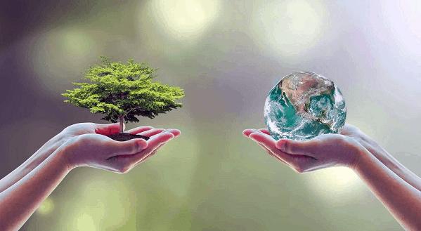 Рисунок 1. 5 июня – день эколога
